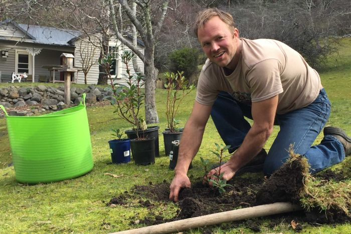 Tasmanian Bushranger Martin Cash's Orchard is being re-established with native plants