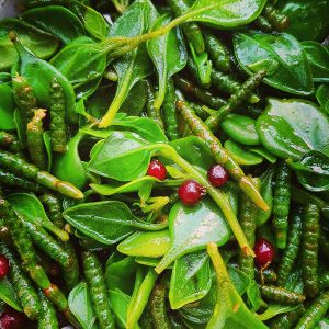 Tasmanian Pepper Leaf seasoned coastal greens